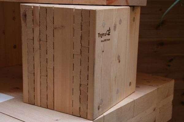 Profil perete lemn Thoma